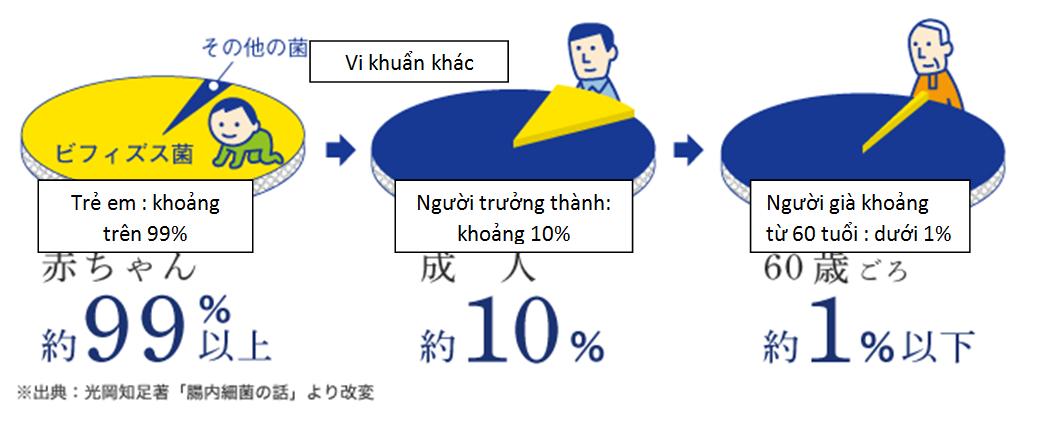 Loi ich Men tiêu hoá Heath Aid Bifina Nhật Bản